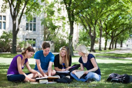 College students studying together in campus ground